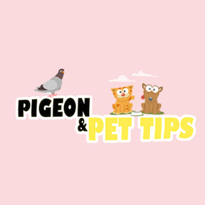 Pigeon & Pet Tips