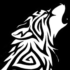 ذئب المعلوميات
