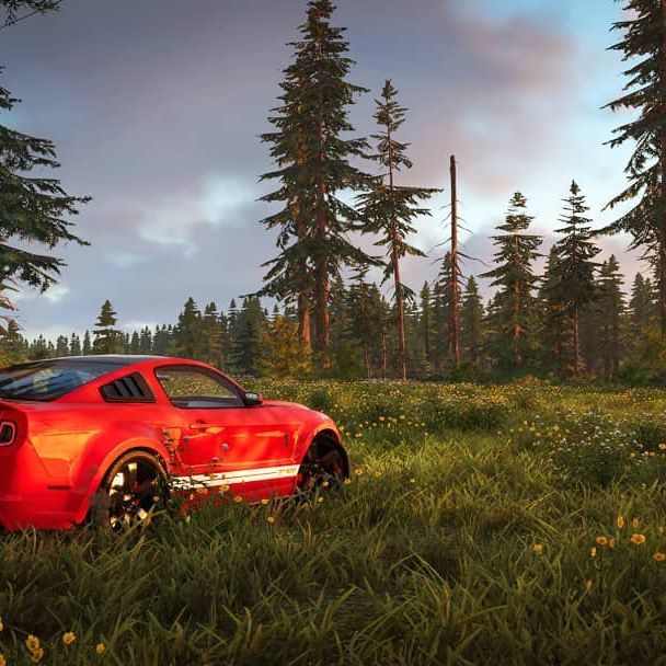 Sitting in my Ford Shelby Mustang Cobra Gt500 Sport RS350 Super Snake Fastback R H Saleen Boss Fox Body SVT e  #thecrew2 #thecrew #shelby #mustang #pc #ubisoft #shelbygt500 #multiplayer #gamepictures #virtualphotography #gametography #racinggames #racinggame #drivinggames #photomode #carpictures #cars #carpics #car #gameplay #screenshots #carpic #fordmustang #forest #countryside #edited #videogames #gamecapture #gaming #meadow