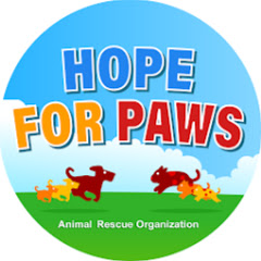Hope For Paws - Official Rescue Channel