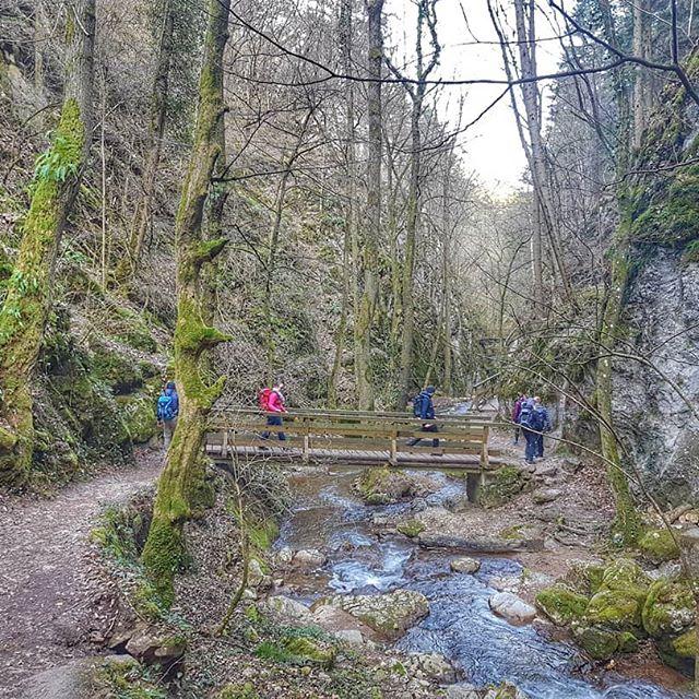 Dort wäre ich jetzt lieber... Natur und Bewegung 😍 . . #lovenature #naturelovers #natur #nature #happyday #happylife #fitness #fitnessmotivation #outdoor #outdoorfun #outdoorphotography #hike #spaziergang #wandern #memoriesmade