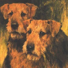 AIREDALE 1948