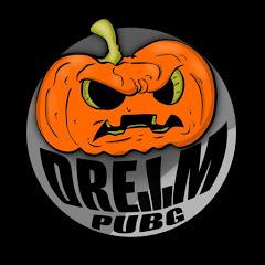Dream Pubg