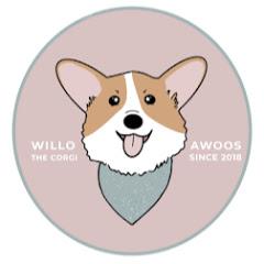 Willo the Corgi