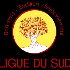 Ligue Du Sud