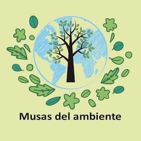 Musas del ambiente
