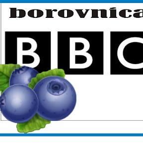 BorovnicaBBC