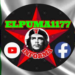 ElPUMA1177 INFORMA