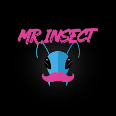 Mr Insect