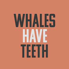 Whales Have Teeth