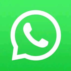 statut whatsapp 2019 ستاتي واتساب