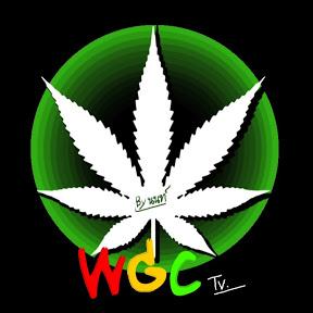 WGC TV