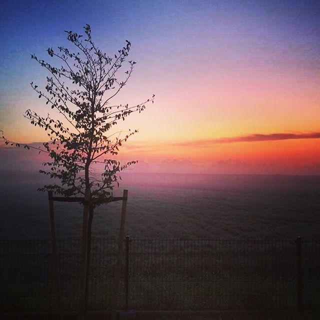 Jak dobrze wstać dla tych chwil 😉 💥 #dziendobry #goodmorning #świt #mgła #sunrise #poland #chill #trip #tree #colorful #photography #vsco #sunrise #world_photography #wschodslonca #sunrise_sunset_photogroup #sunriseoftheday #czasdopracy ☀️Kolorowego  piątku 13-go🍀 😘