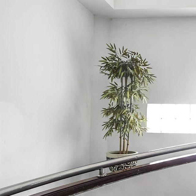 Pesan terpenting berada di foto terakhir. . . #minimalism #minimalisnusantara #minimalistphotography #minimalistgrams #minimalist #minimalisindonesia #mainsimple