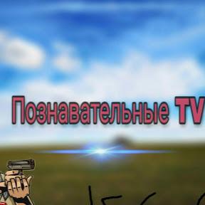 ПОЗНОВАТЕЛЬНЫЙ TV КС ГО