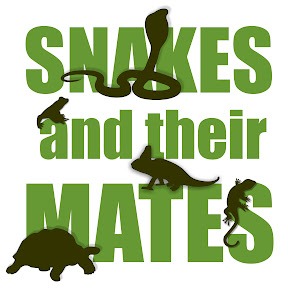 Snakes and their Mates