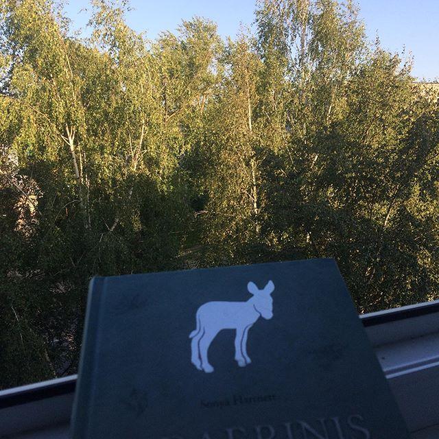 Jau Rugpjūčio vidurys.... reading #sibarinis #asiliukas  #book #bookinsta #booklove #summer