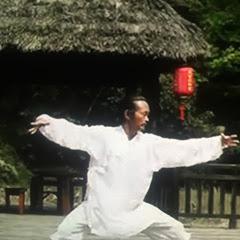 Wudang Taoist Wellness Academy
