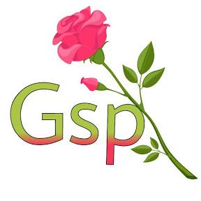 Sangamesh Gsp