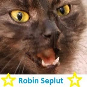 Robin Seplut