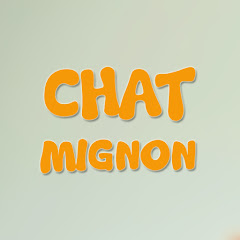 Chat Mignon TV