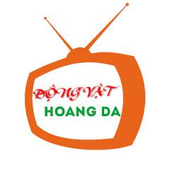 Động Vật Hoang Dã TV