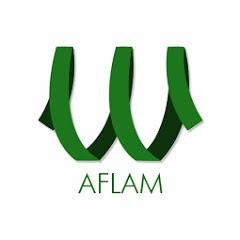 ElWady Aflam