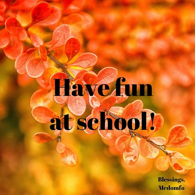 Good luck to everyone going back to school this week, and to the people who have already started school. Have fun, and don't be afraid to reach out to new people. . . . #graciouscreativity #autumn #backtoschool #leaves #orange #uplift #endbullying #change #newyear #newschool