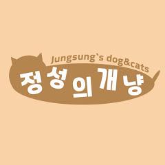 정성의 개냥 Jungsung`s dog&cats