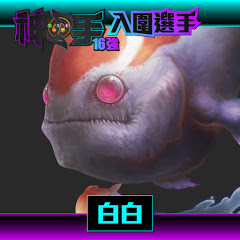 白白-台灣鯛