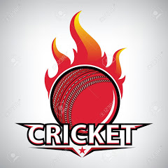 Indian Cricket Zone