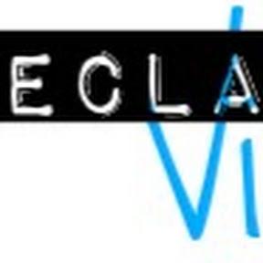 Declaring Vision
