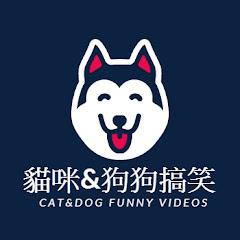 貓咪&狗狗搞笑 Cat&dog Funny videos