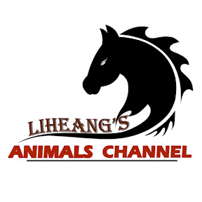 Liheang's Animals Channel