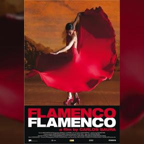 Flamenco, Flamenco - Topic
