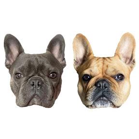 Isa & Hugo French Bulldog