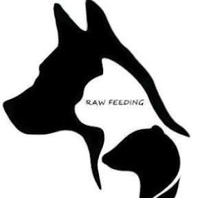 Raw feeding : nourrir son animal sainement
