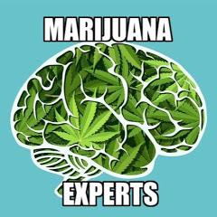 Marijuana Experts