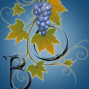 Виноград Одесса