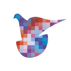 Pigeon Pixels