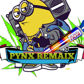 PYNX 1