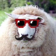 Sensitive Lamb