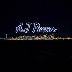 A.J Pocan