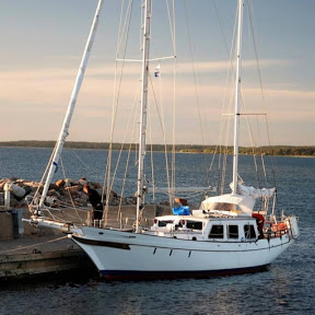 Sailing REX - Rasmus Domanders