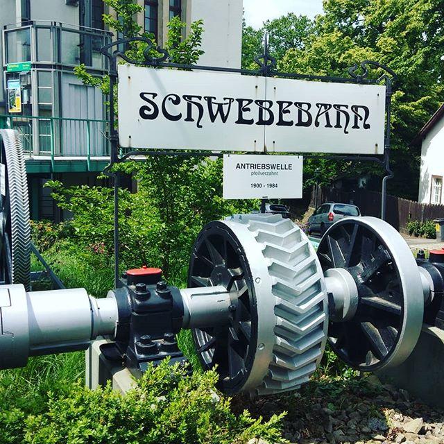 Schwebebahn in Dresden #schwebebahn #schwebebahnbilder #dresden #hängebahn #hängebahnwagen #aussicht
