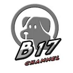 B17 CHANNEL