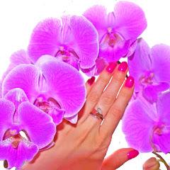 GARDEN ORCHIDES