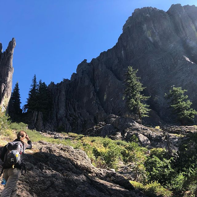 Somehow there's all these crazy rock formations hidden in the Oregon timber.. #oregonhigh #oregon #wallsaremeantforclimbing #climbmorewalls #climbmore #aacgram #americanalpineclub
