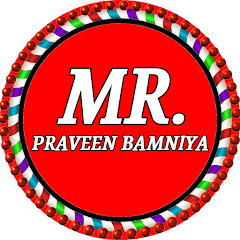 Mr. Praveen Bamniya