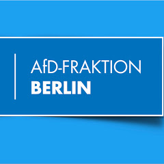 AfD Fraktion Abgeordnetenhaus Berlin